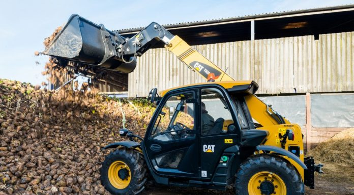 Cat Telehandler TH306D